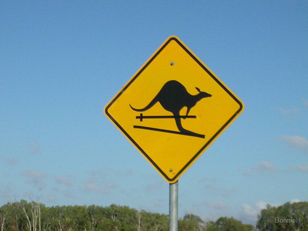 Roo crossing or is it roo skiing? by BonnieH