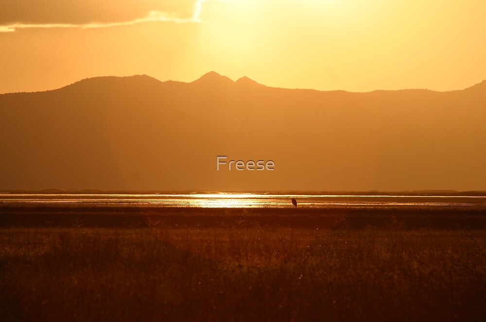 Northern Utah Sunset by Freese