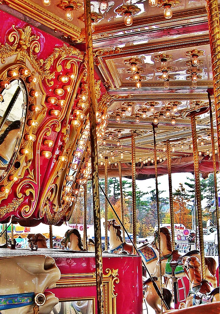 The Carousel by Abigail  Mooney