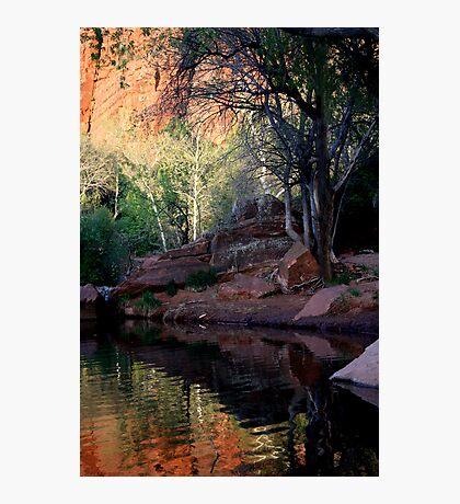 Arizona Reflections Photographic Print