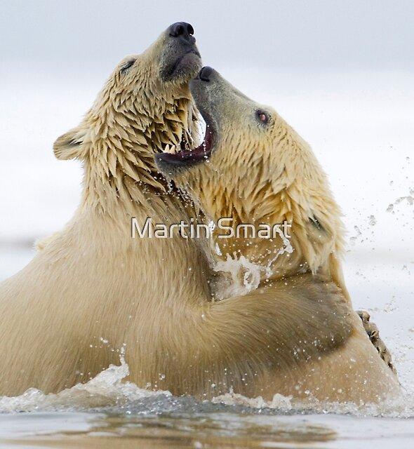 Water Sport by Martin Smart