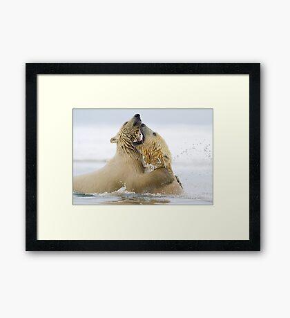 Water Sport Framed Print
