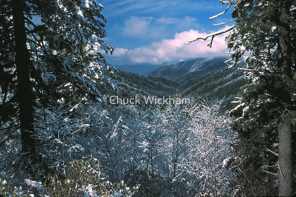 NEWFOUND GAP,WINTER by Chuck Wickham
