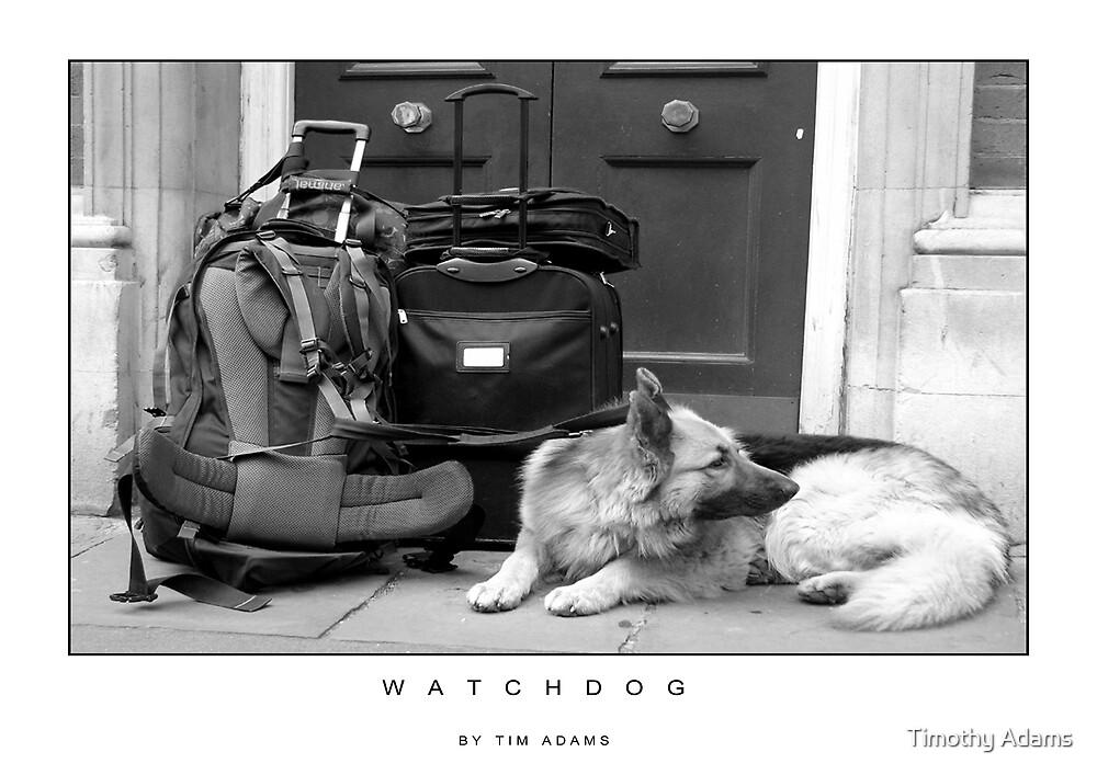 watchdog by Timothy Adams