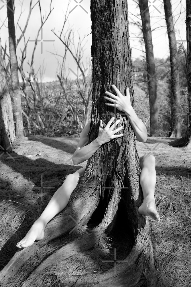 Hands and tree by Mel Brackstone