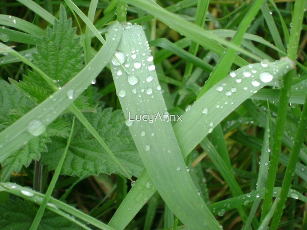 Waterdrops on grass by LucyAnnx