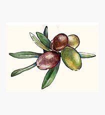 Olive Photographic Print