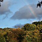 Rivington Rainbow by Paul Gibbons