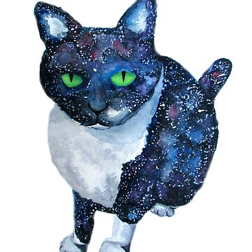 Galaxy Cat by christinaashman