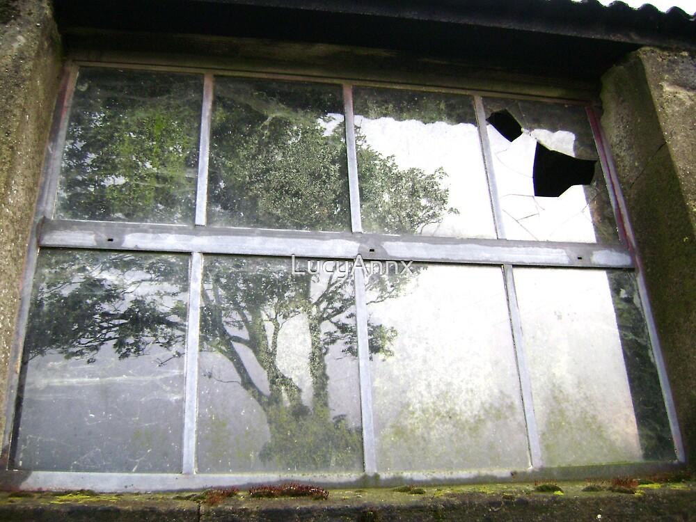 Window by LucyAnnx