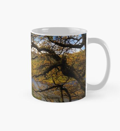 The beautiful Fagus Mug