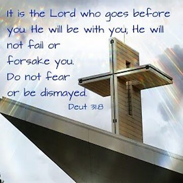 Deuteronomy 31:8 by fionawb