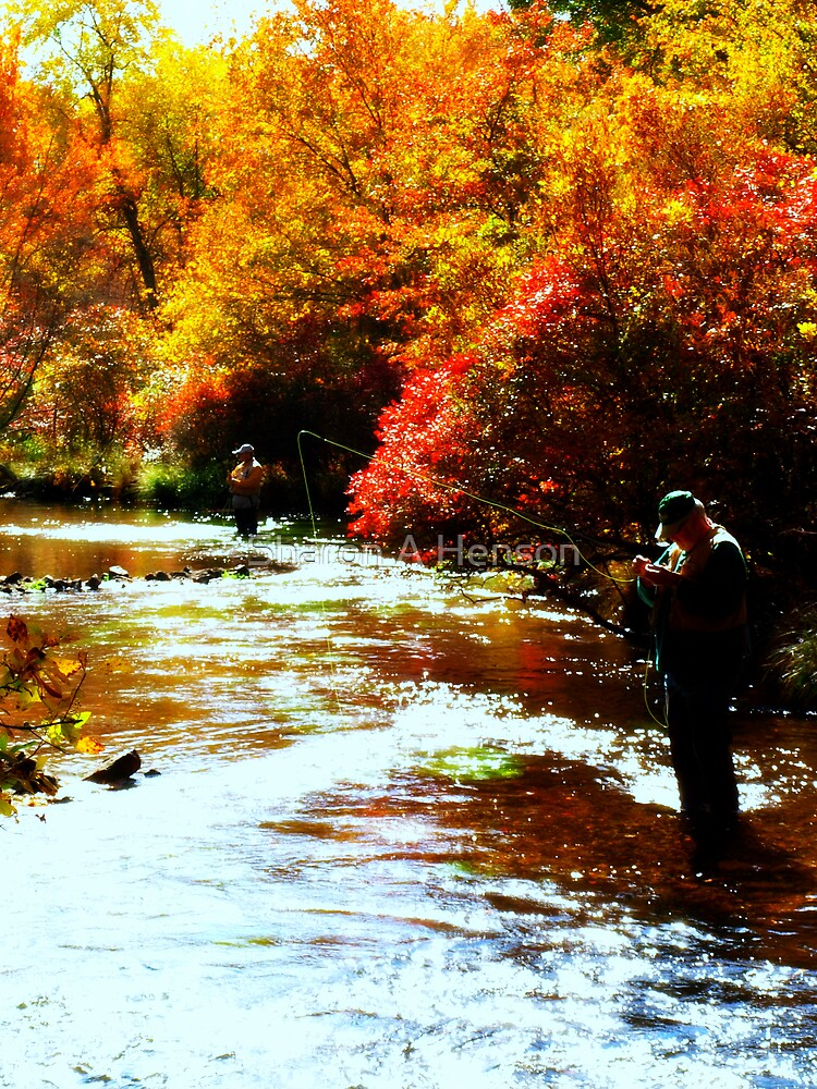 FLY FISHING by Sharon A. Henson
