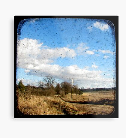 Bush Telegraph Metal Print
