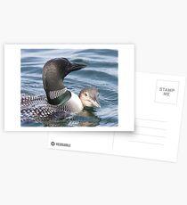Close Quarters Postcards