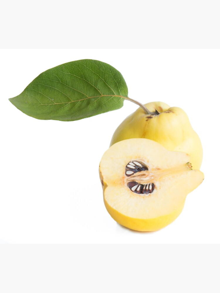Quince fruits by igorsin