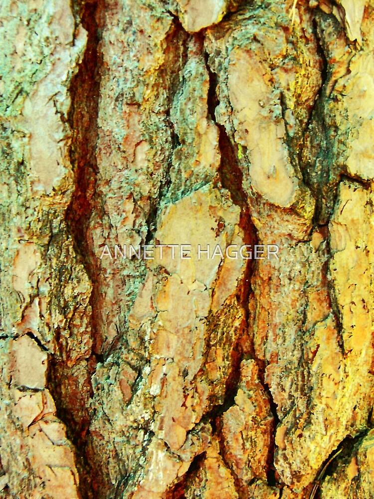 CLOSE UP OF BARK, PORINGLAND WOOD 6, NORFOLK by ANNETTE HAGGER
