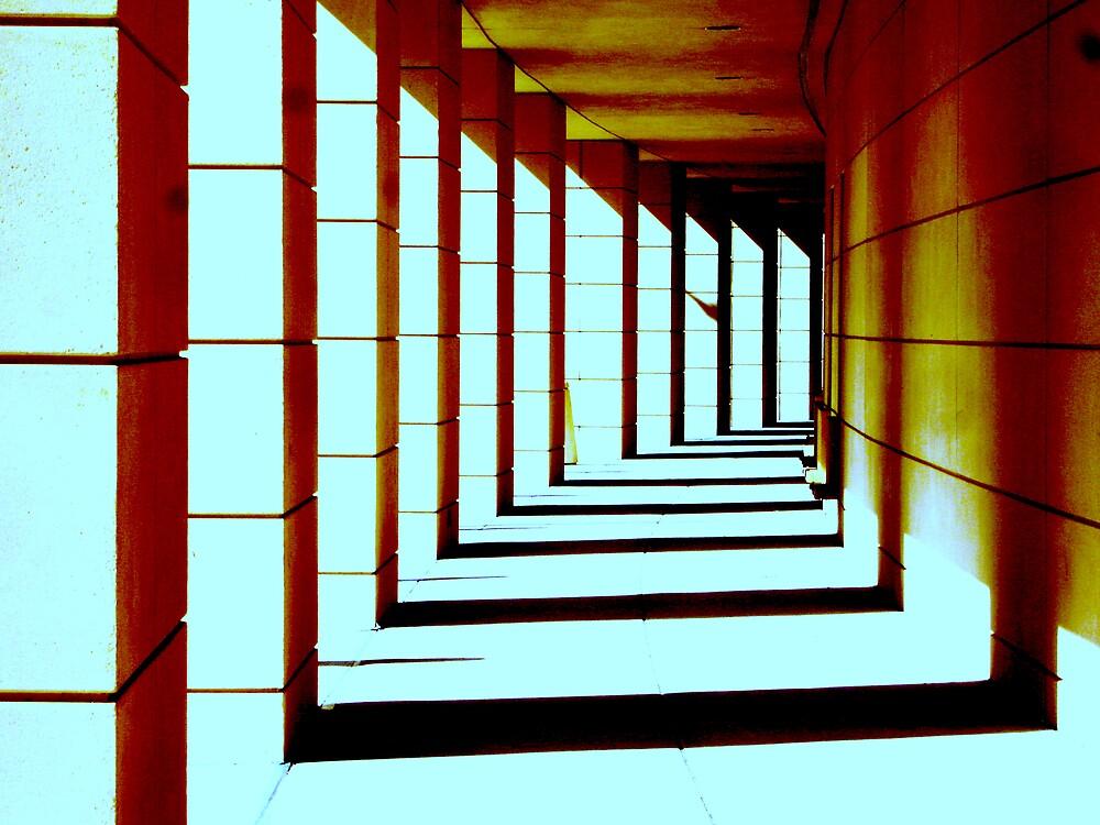 Walk This Way  by Elizabeth Rodriguez