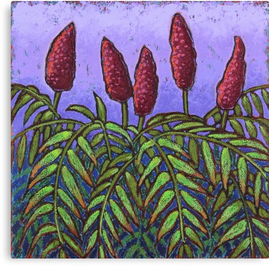 Evening Sumacs by Dorothy Siemens