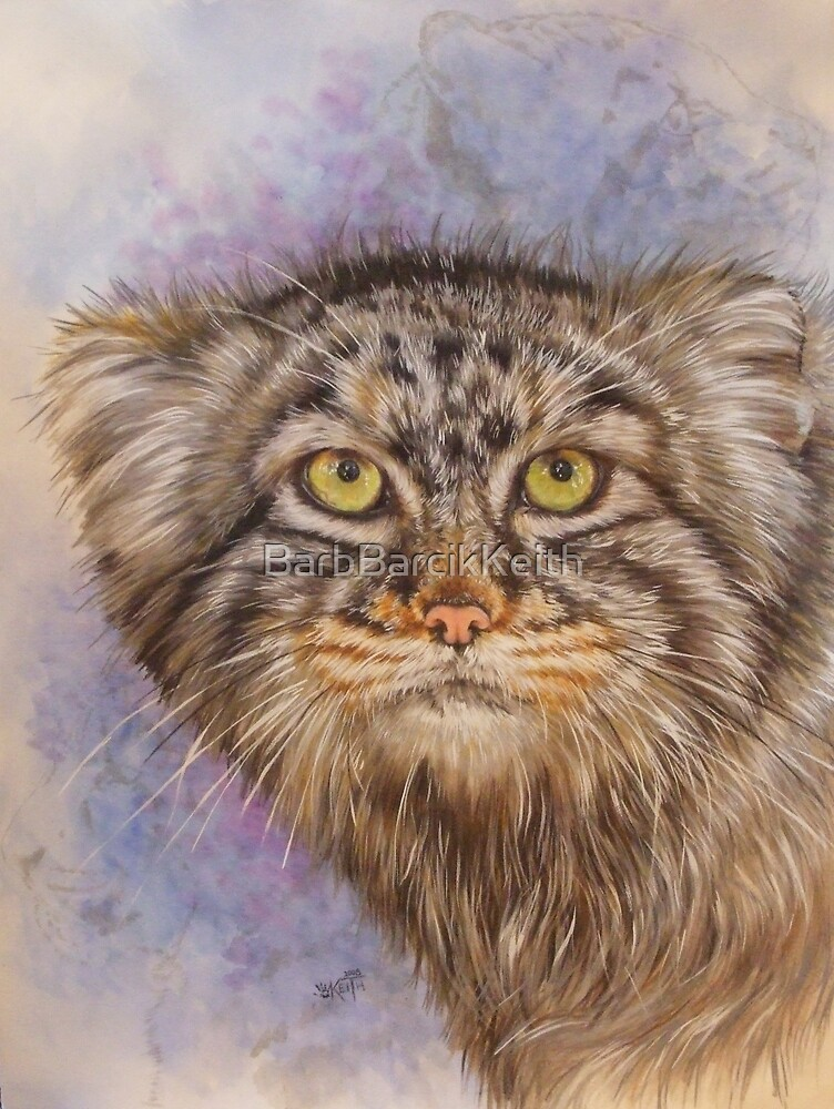 Berry's Pallas' Cat by BarbBarcikKeith