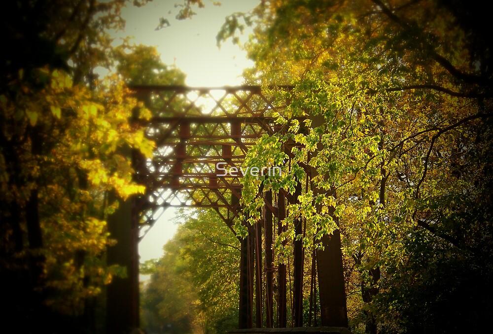 iron bridge series by Severin