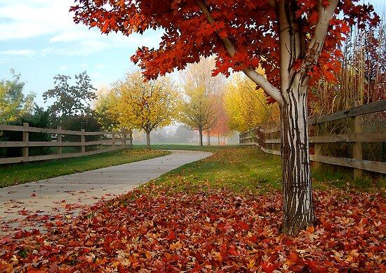 October Color Palette by Pamela Hubbard