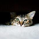 Her Safe Spot by brightfizz