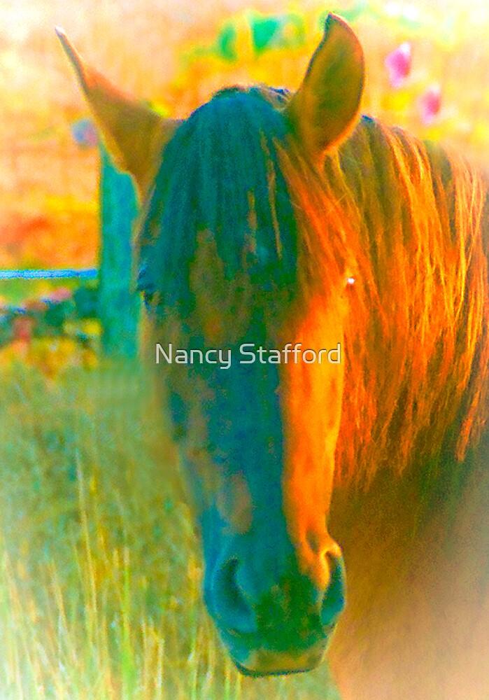 Golden Horse by Nancy Stafford