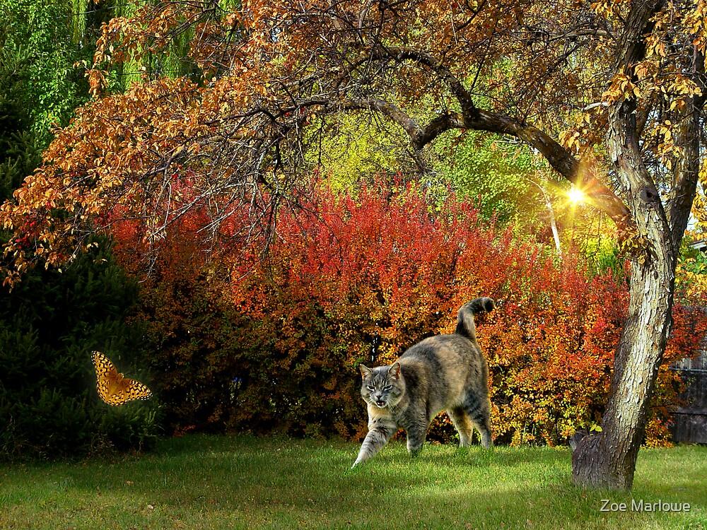 My Autumn Garden by Zoe Marlowe