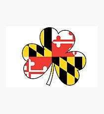 Maryland Flag Four Leaf Clover Photographic Print