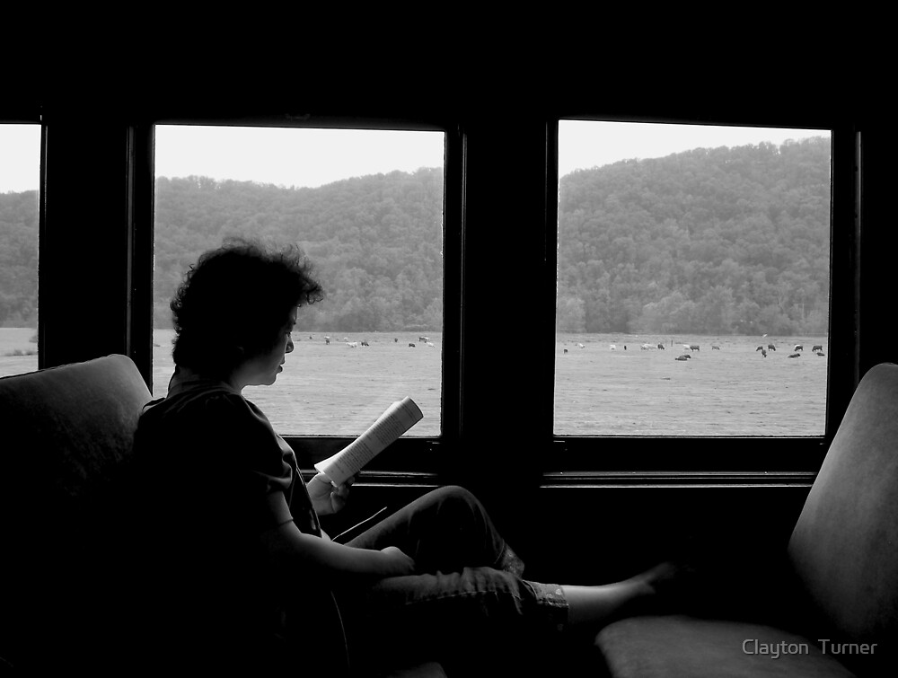 """Lady on the Train"" by Clayton  Turner"