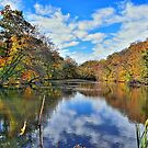 Autumn Memories At The Pond by Lanis Rossi