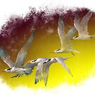 Terns flying together by ripplesoftime