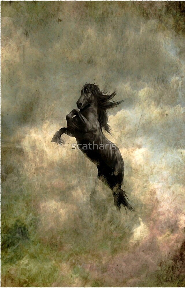 """""""Friesian Horse"""" by scatharis"""