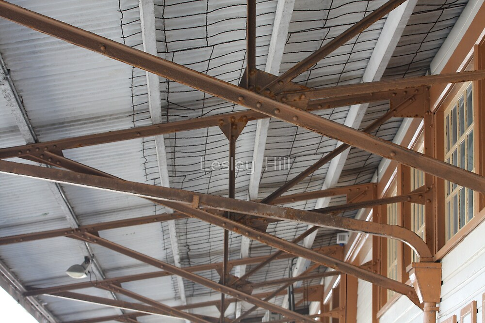 Wharf Roof ! by Lesley  Hill
