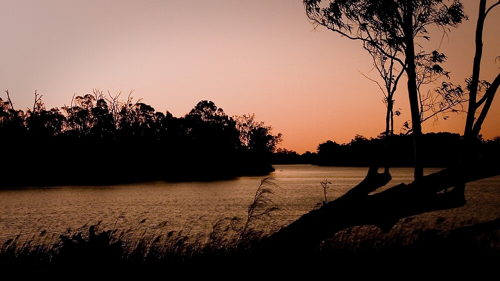 Murray Nights by Emjay01