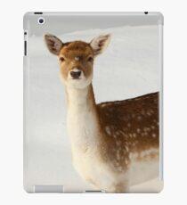 Winter's Beauty  iPad Case/Skin