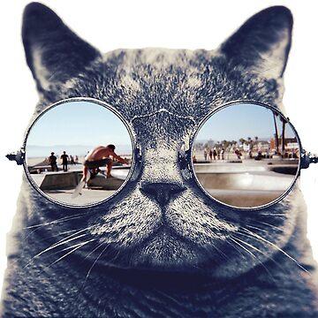 California Dreaming Cat by miranda1187