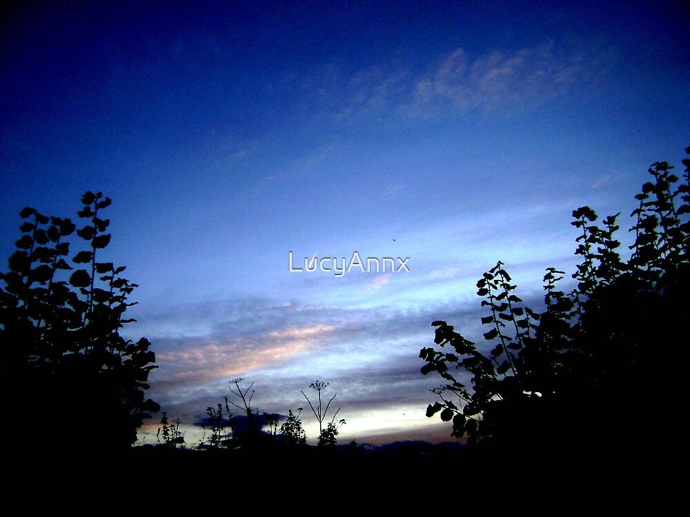 sunset sky by LucyAnnx