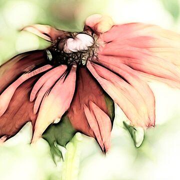 Painted Daisy by tenia115