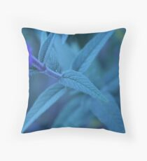 Recognition Throw Pillow