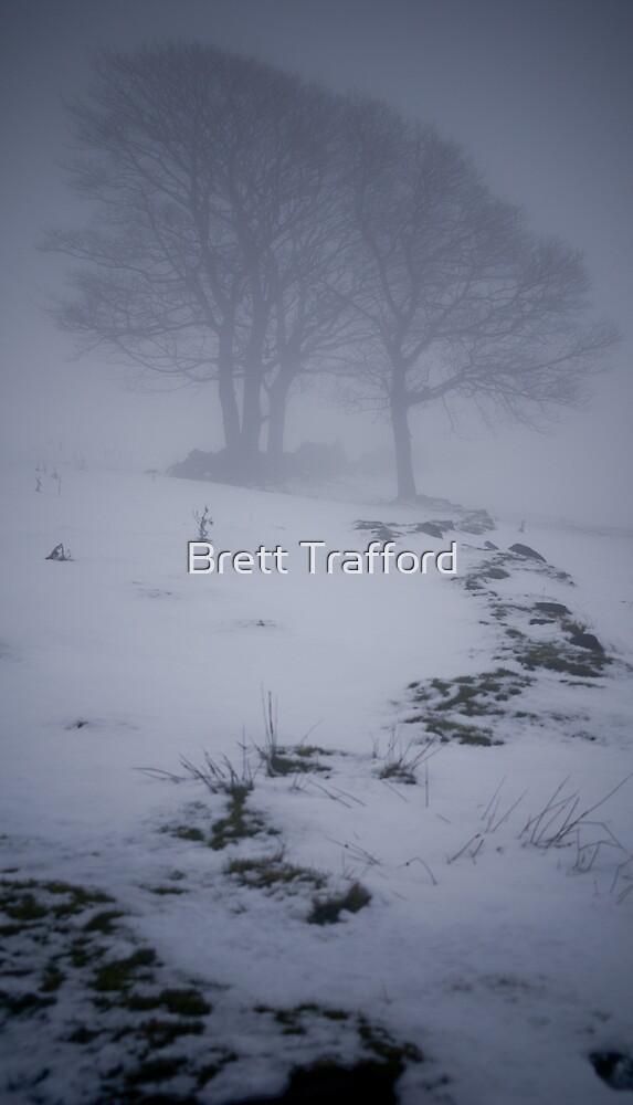 Snow scape 2 by Brett Trafford