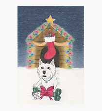 A Gift From Santa Paws Photographic Print