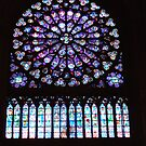Notre Dame Cathedral Paris rose window by Denise Martin