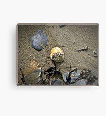 The Sea Shore. Metal Print