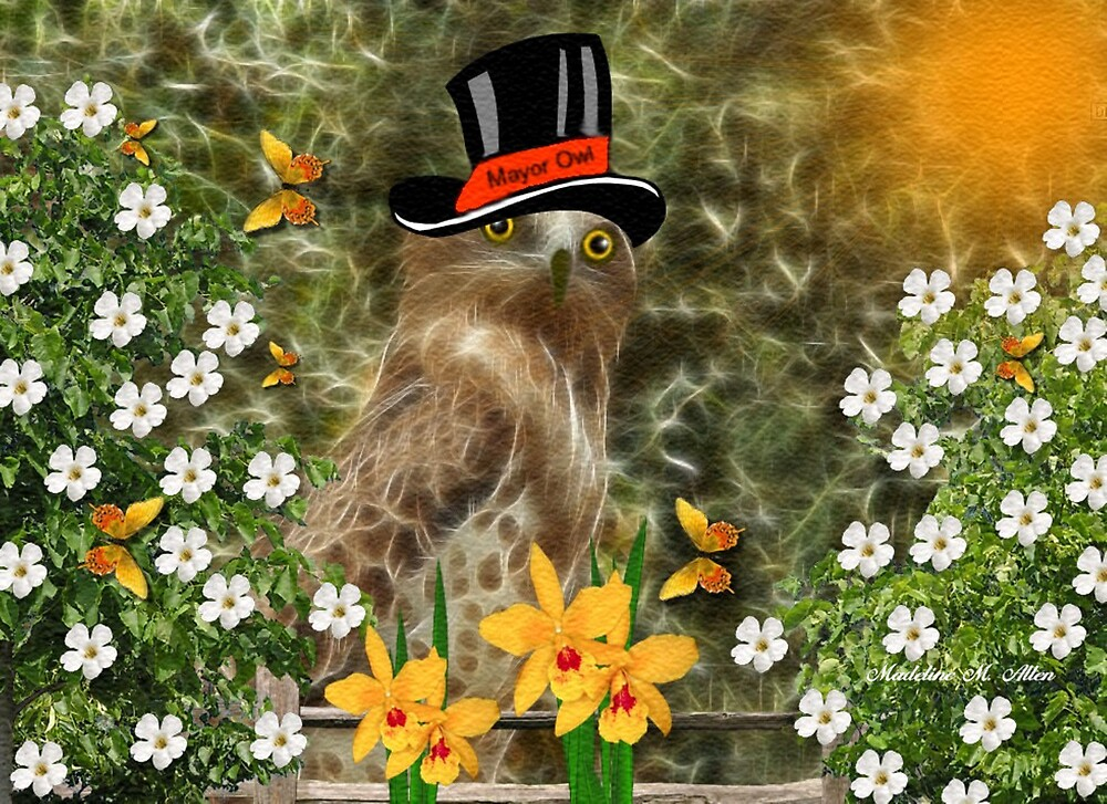 ~ MAYOR OLEA OWL ~ by Madeline M  Allen
