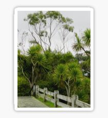 Cabbage Trees  Botanic Gardens Wellington  New Zealand Sticker