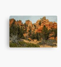Red Canyon Morning Canvas Print
