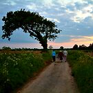 Into the setting sun... by newbeltane