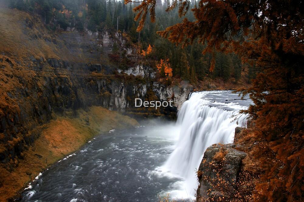 Mesa Falls  by Despot